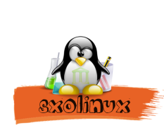 xsxolinux-logo.png.pagespeed.ic.hd1iDympDD